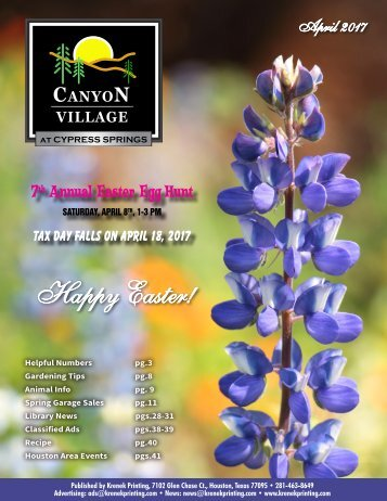 Canyon Village at Cypress Springs April 2017