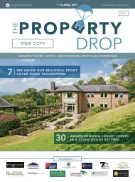 Property Drop Issue 1