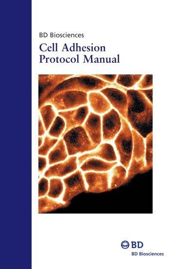 Cell Adhesion Protocol Manual - BD Biosciences