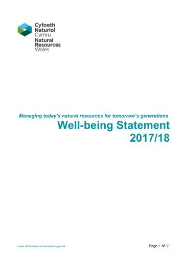 Well-being Statement 2017/18