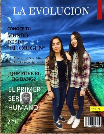 Revista MSI PDF
