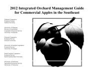 2012 Integrated Orchard Management Guide for Commercial Apples ...