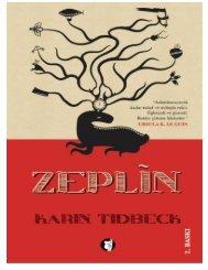 zeplin-karin-tidbeck