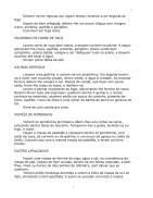Cozinha-Portuguesa - Page 7