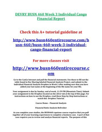 cango financial analysis report