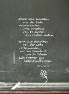 gangart_5_Bildung - Page 4