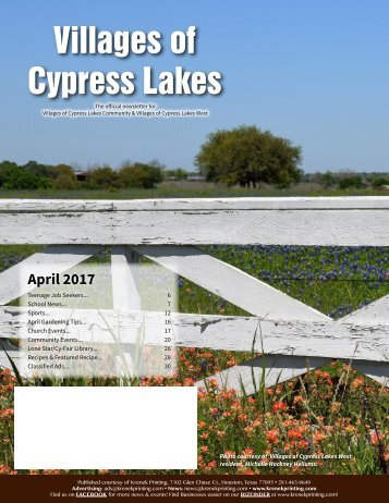 Villages of Cypress Lakes April 2017