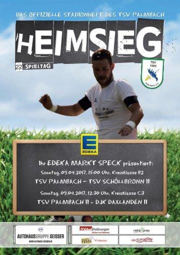 TSV Palmbach Heft-11