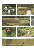 Definitief masterplan Park Brialmont - Page 4