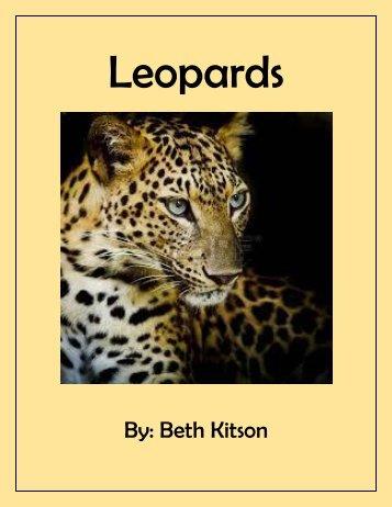 Leopard book Practice flip book