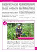 EXTRACTIVES IN ZIMBABWE - Page 5