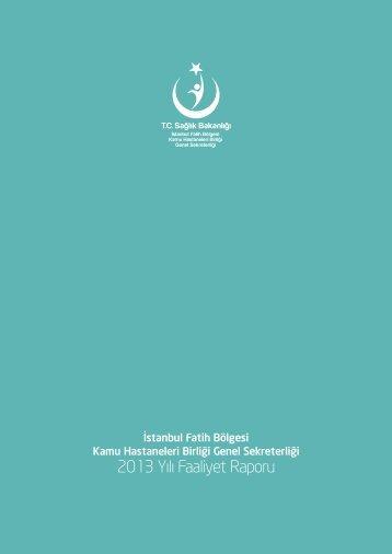 2013 Yılı Faaliyet Raporu