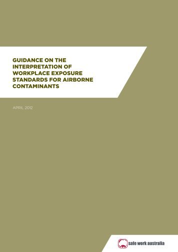 Guidance on the Interpretation of Workplace Exposure Standards
