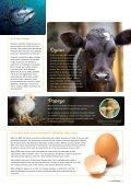 Guia Vegetariano - Page 7