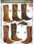#585 El Norteno Family Store Botas, Ropa y Accesorios Vaqueros - Page 5