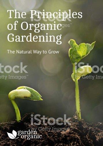 Garden Organic Booklet - Final Draft 01