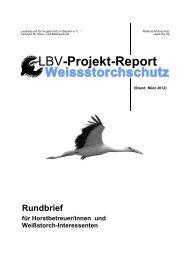 Erfolgreiches Weißstorchjahr 2011 Bestandsanstieg und gutes - LBV