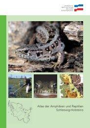 Atlas der Amphibien und Reptilien Schleswig-Holsteins