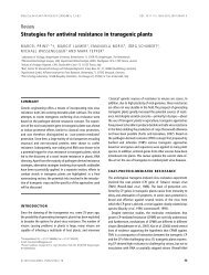 Strategies for antiviral resistance in transgenic plants - ResistVir