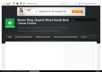 420 stoner blog