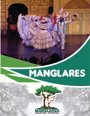 portafolio para rvista manglares