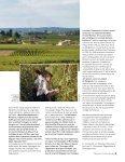 Le Passeport Culinaire-Femme magazine - Page 3