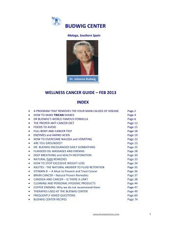 Budwig Cancer Guide   Free Download