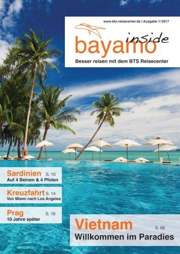 bayamo inside 2/2017