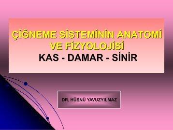 2-anatomi-kas-damar-sinir