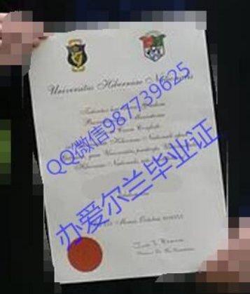 办NUI,Galway  diplomaQ微信987739625爱尔兰国立高威大学毕业证transcript教育部存档文凭认证National University of Ireland Galway