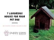 7 Luxurious Houses For Your Pet Dog