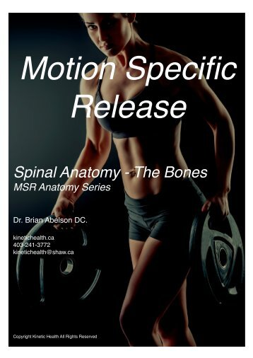 Spinal Anatomy - The Bones