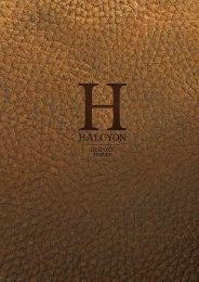 Halcyon Passport