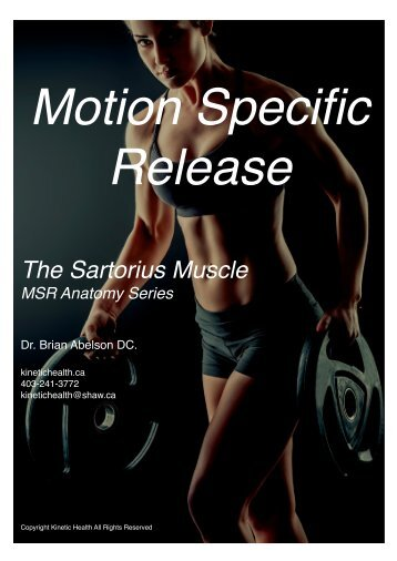 The Sartorius Muscle