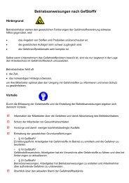Betriebsanweisungen nach GefStoffV - Theodor Heuss Schule