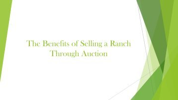 The Benefits of Selling a Ranch through Auction