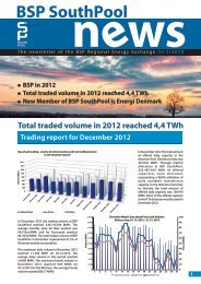 BSP SouthPool News January 2013