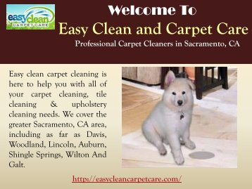 Carpet Cleaning Sacramento, CA| Easy Clean Carpet Care