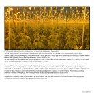 Leaflet Cucumber Imea Russia - Page 7