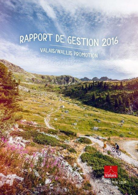 Rapport de gestion 2016