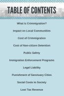 The Cost of Crimmigration - Page 3
