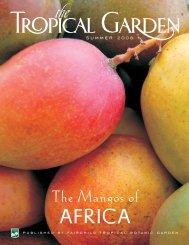 The Mangos Of Africa - Fairchild Tropical Botanic Garden
