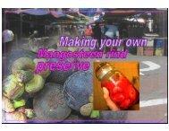 Home-made mangosteen rind preserve - Mycoalkonics