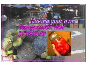 Home-made mangosteen rind preserve - Mycoalkonics