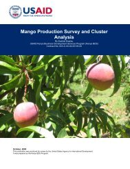 Mango Production Survey and Cluster Analysis