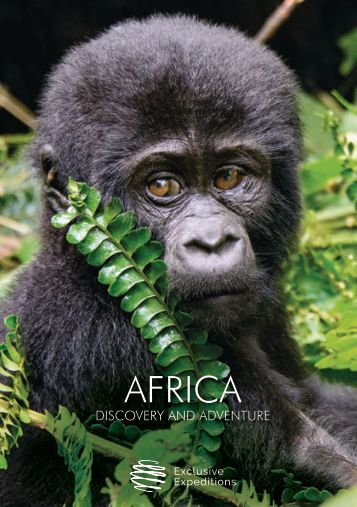 Africa A5 16pp low res