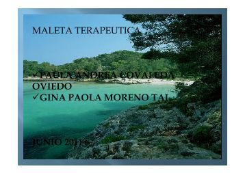 MALETA TERAPEUTICA PAULA ANDREA COVALEDA OVIEDO ...
