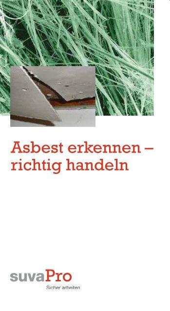 Top Asbest erkennen – richtig handeln RA74