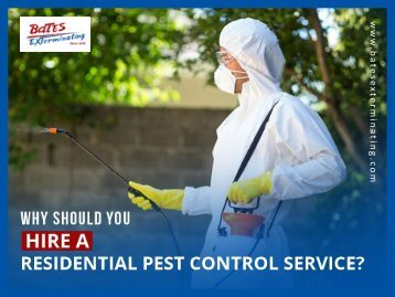 Why Hire Residential Pest Control Services?