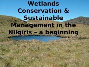 list of wetlands surveyed - The Nilgiris Water